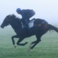 windinherhair02さん