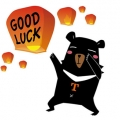 snappingturtlesさん